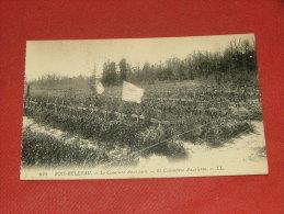 BOIS BELLEAU  -  Le Cimetière Américain  -   American Cemetery - Frankrijk