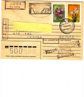 UZEBECHISTAN  1996 - Yvert  30-31 Su  Raccomandata Per Il Canadà (fiori) - Uzbekistan