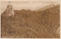 Riederstein Und Baumgarten Tegernssegebiet - Tegernsee