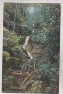 CPM MOUNT FENELIA, FALLS (NAME ?) - Australie