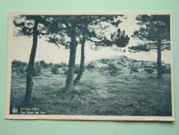 Het Strand Der Bloemen ( Bezoekt Den Haan ) - Anno 19?? ( Zie Foto Voor Détails ) !! - De Haan