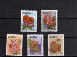 ISOLA DI CAPO VERDE CABO CAPE 1980 FLORA FLOWER FIORI FIORE FLOWER USATI USED OBLITERE' - Isola Di Capo Verde