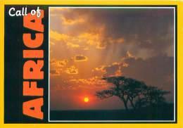 CPM - Call Of Africa - Afrique Du Sud