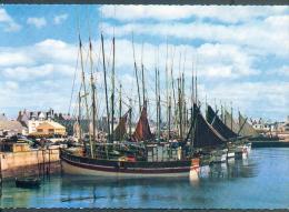 BATEAUX -  PECHE Au Repos Dans Le Port - Fishing Boats