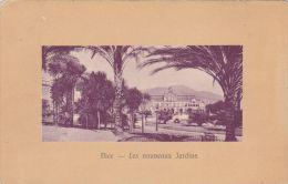 Cp , 06 , NICE , Les Nouveaux Jardins - Parks