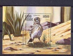 Naa1470 FAUNA VOGELS BIRDS VÖGEL AVES OISEAUX CABO VERDE 1981 PF/MNH - Birds