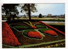 CP 10*15/AE260/CHATEAU GONTIER LE JARDIN LE PAPILLON 1980 - Chateau Gontier