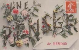 UNE PENSEE DE MEZIDON  14   FANTAISIE EDITEUR E L D - Monde