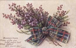 NCb-  Mountain Heath, Poem Grant, Scottish Clan Ribbon Tuck's Oilette - Tuck, Raphael
