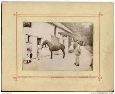 Belle Grande Photo Cartonnée-écurie-cheval-à Identifier Propriété Dans Le Maine Et Loire-photo Peltier à Pouancé - Alte (vor 1900)