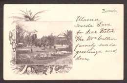 BM9) Hamilton - Victoria Park - Posted 1904 - Bermudes