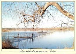 CPSM La Pêche Du Saumon En Loire  L1472 - Fishing