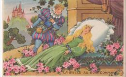 Carte à Paillettes - IDA - La Belle Aux Bois Domant - Sin Clasificación