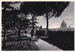 Italia--Roma--1957--Instituto Emilia De Vialar--La Cupola Di S.Pietro Vista Dal Giardino--Francia - Escuelas