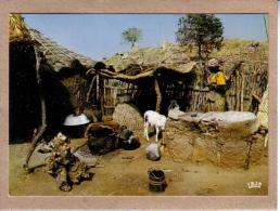 AFRIQUE EN COULEURS - CPM - 8471 - SCENES DE VIE - éditeur IRIS - Postcards