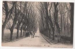 GARGENVILLE (HANNECOURT)  L'Avenue - Gargenville