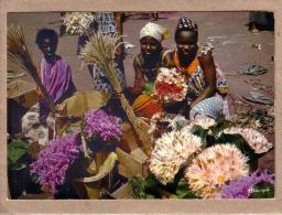 AFRIQUE EN COULEURS - CPM - 3641 - MARCHANDES DE FLEURS - FEMME - éditeur IRIS - Cartes Postales