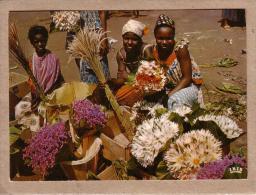 AFRIQUE EN COULEURS - CPM - 3641 - MARCHANDES DE FLEURS - FEMME - éditeur IRIS - Postcards