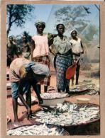 AFRIQUE EN COULEURS - CPM - 3473 - RETOUR DE PÊCHE - éditeur HOA-QUI - Postcards