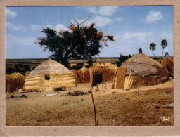 AFRIQUE EN COULEURS - CPM - 8489 - VILLAGE DORF - HUTTE -  éditeur IRIS - Postcards