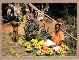 AFRIQUE EN COULEURS - CPM - 3477 - MARCHANDE DE FRUITS - FEMME - éditeur HOA-QUI - Postcards