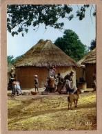 AFRIQUE EN COULEURS - CPM - 8488 - PREPARATION DU REPAS - FEMME - éditeur IRIS - Postcards