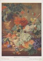 (ART450) VAN HUYSUM. FRUIT AND FLOWERS - Paintings
