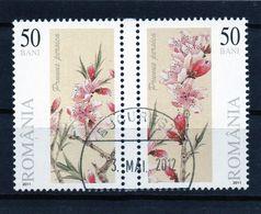 ++ RUMANIA / ROMANIA / ROUMANIE  Año 2011  Usado  Flores - 1948-.... Repúblicas