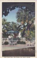 Georgia Sea Island Cloister Hotel Palm Dance Patio