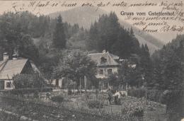 GRUSS VOM GSTETTENHOF - Autriche