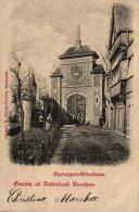 BELGIQUE - ANVERS - BORNHEM - Groeten Uit Buitenland Bornhem. - Bornem