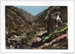 (06) ST-SAUVEUR-de-TINEE-La Vallée De La Tinée Route D´Isola 1962. - Non Classificati