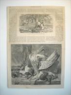 GRAVURE 1864. LA CUIELLETTE DES POMMES EN NORMANDIE. L'HIVER; D'APRES GEORGE LANCE. EXPLICATIFS. - Prints & Engravings