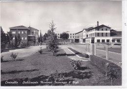 CARD CASINALBO STABILIMENTO MONTORSI SALUMIFICIO       (MODENA )  COME DA SCANNER -FG-N-2-0882-18973 - Modena