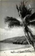 NOUVELLE CALEDONIE - CARTE PHOTO - Nouvelle Calédonie