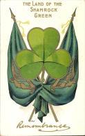 ST PATRICKS DAY / REMEMBRANCE / GREETINGS ~ LAND OF THE SHAMROCK GREEN ~ IRELAND Pu1911 - Saint-Patrick's Day