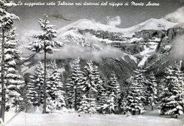 Le Suggestive Vette Feltrine Nei Dintorni Del Rifugio Avena - Italia