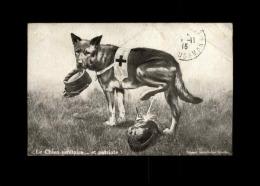 MILITARIA  - CROIX ROUGE - Guerre 14-18 - Chien Sanitaire - Casque à Pointe - Croix-Rouge
