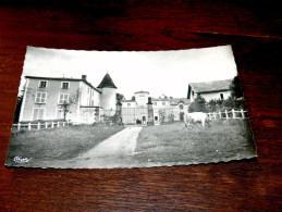 Carte Postale Ancienne : CULHAT : Chateau De Champgarand , Animé ,  Vache - Andere Gemeenten
