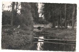 Fresnoy-la-Rivière (60) : La Zone D´abattage Des Arbres En Bord D´Automne Près Du Petit Pont En 1959 PF. - Otros Municipios