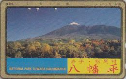 Rare Télécarte Dorée Japon / 110-011 - Volcan MONT FUJI - Mountain Vulcan Japan Gold Phonecard - Berg TK - 130 - Volcans