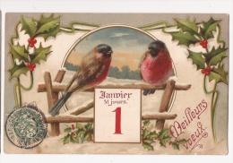 *** OISEAU BOUVREUIL *** MEILLEURS VOEUX DE DEUX BOUVREUILS  *** 1ER JANVIER *** - Birds