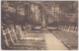 19923g CIMETIERE NORD - Allée Intérieure Où Sont Enterrés Des Soldats Et Officiers Français Du 1er Colonial - Rossignol - Tintigny