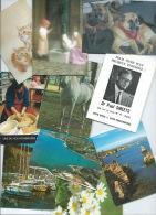 Lot De 65 Calendriers De Poche ( 1967 - 2010, Voir Détails ) - Calendars