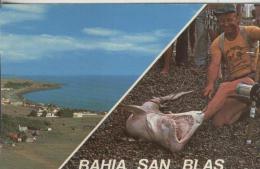 Postal:: Bahia San Blas-Argentina - Sin Clasificación