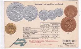 CARD MONETE ARGENTINA BANDIERA IN RILIEVO COME DA SCANNER   -FP-N-2-0882-19210 - Monete (rappresentazioni)