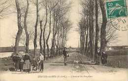 Nov13 438 : Etaples  -  Avenue Des Peupliers - Etaples