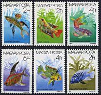 HUNGARY 1987 FISHES / AQUARIUM FISH MNH - Otros
