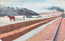 UTAH  SALT BEDS,  GREAT SALT LAKE  1912  Used - Salt Lake City