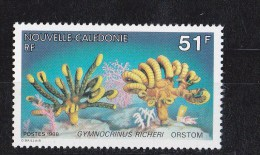 Nouvelle-Calédonie N ° 557** - Nueva Caledonia